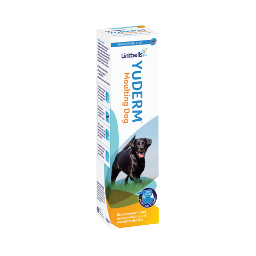 YuDERM Dog Skin & Coat Supplement 500ml