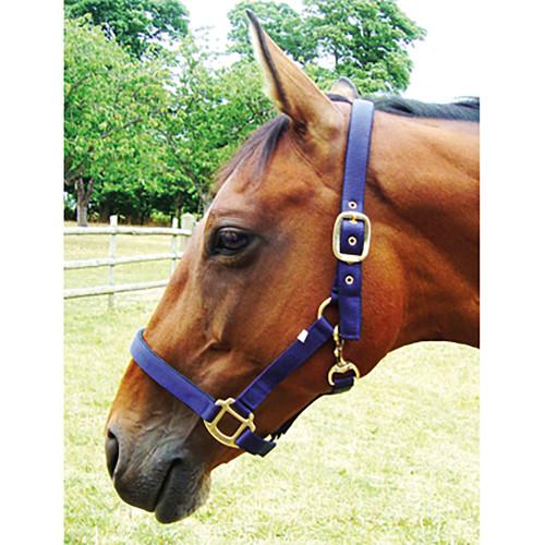 JHL Full Padded Headcollar for Horses Navy