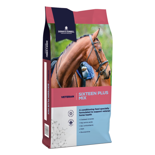 Dodson & Horrell Sixteen Plus Mix for Horses 20kg