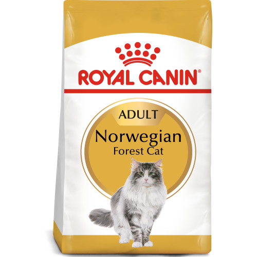 Royal Canin Norwegian Forest Cat Adult Dry Cat Food 10kg x 2