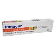 Panacur Worming Paste for Cats & Dogs