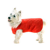Cosipet Step In Suit Quilted Dog Coat Red