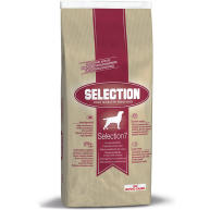 Royal Canin Selection 7 Maintenance Dinner Adult Dog Food 15kg