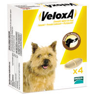 Veloxa Chewable Worming Tablets for Dogs 4 Tablets NFA-D