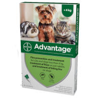 Advantage Flea Control 40 Small Cats Dogs & Rabbits to 4kg (4 pipettes) NFA-DCS