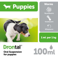 Drontal Puppy Liquid Worming Treatment  100ml NFA-D