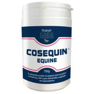 Cosequin Equine Joint Supplement 700g