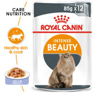 Royal Canin Intense Beauty Care in Jelly Adult Wet Cat Food Pouches 85g x 12