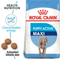 Royal Canin Maxi Puppy Active Dry Dog Food