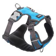 Red Dingo Padded Harness for Dogs in Turquoise