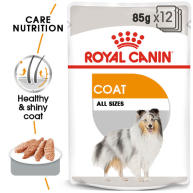 Royal Canin Coat Care Wet Adult Dog Food Pouches