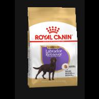 Royal Canin Labrador Retriever Sterilised Dry Adult Dog Food