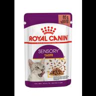 Royal Canin Sensory Taste in Gravy Wet Adult Cat Food 85g x 12