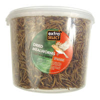 Extra Select Mealworms for Wild Birds