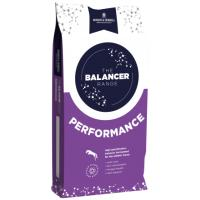 Dodson & Horrell Performance Horse Balancer