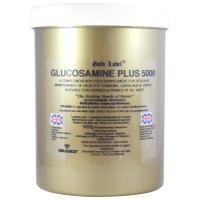 Gold Label Glucosamine Plus 5000 Horse Supplement