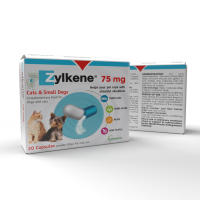 Zylkene Natural Calming Capsules for Cats & Dogs