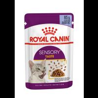 Royal Canin Sensory Taste in Jelly Wet Adult Cat Food