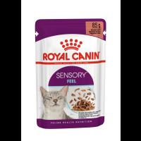 Royal Canin Sensory Feel in Gravy Wet Adult Cat Food