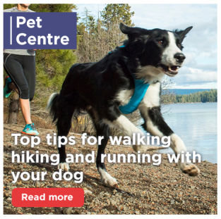Top tips for walking hiking and running with your dog