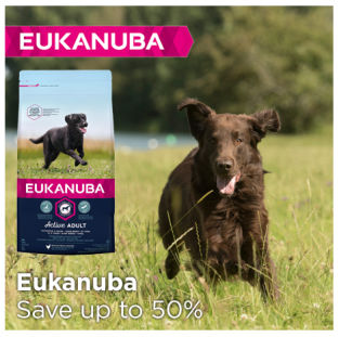 Save up to 50% on Eukanuba dry dog food