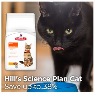 Save up to 38% on Hills Science Plan cat food