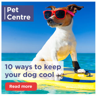 10 ways to keep your hot dog cool