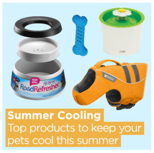 Summer Cooling products for pets