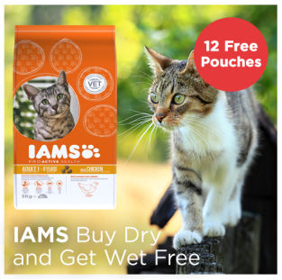 IAMS get wet cat food free with dry cat food
