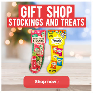 Christmas Stockings and Treats