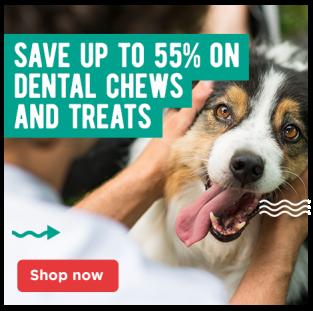 Dental Treats and Chews