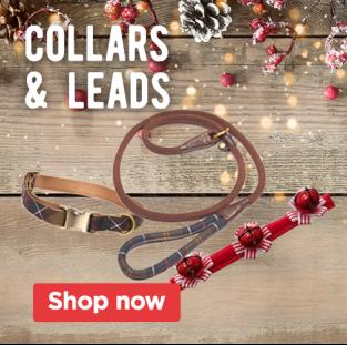 Christmas Collars & Leads