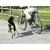 Pet Corrector Spray for Dogs
