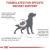 Royal Canin Veterinary Diets Renal Special Dog Food