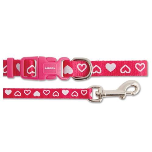Small Bite Heart Collar & Lead Puppy Set