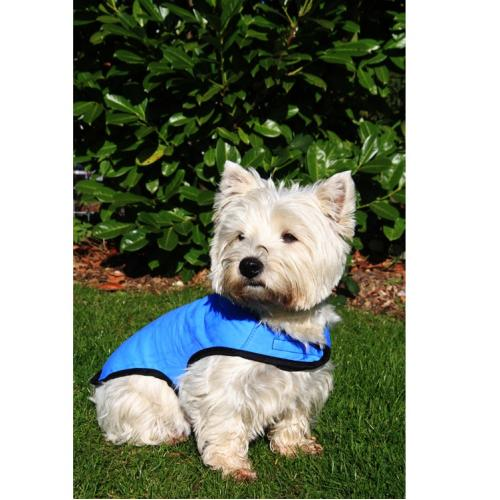 Prestige Cool Coats Cooling Dog Coat