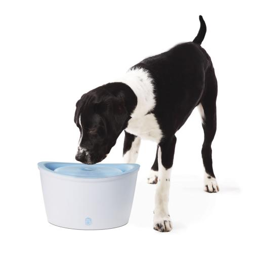 Dogit Drinking Fountain
