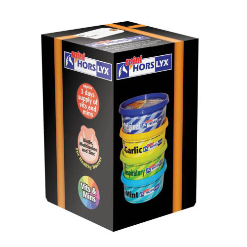 Horslyx Mini Licks Rainbow Mixed Box for Horses