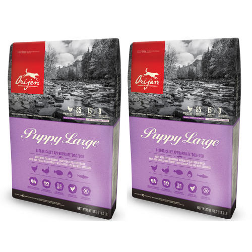 Orijen Puppy Large Dog Food