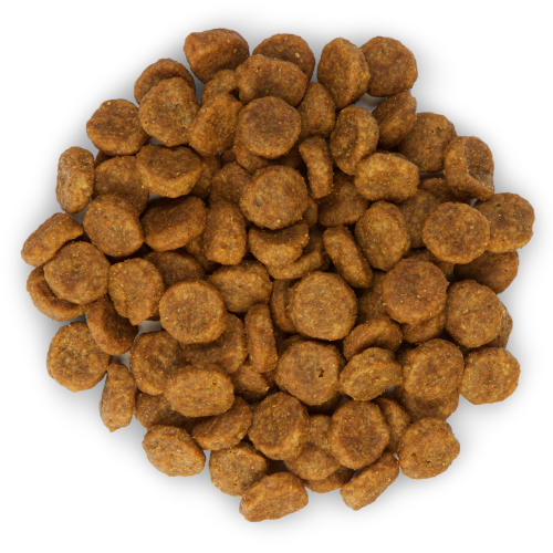 Hills Science Plan Canine No Grain Chicken Dog Food From 163