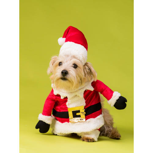 House of Paws Christmas Santa Fancy Dress for Dogs