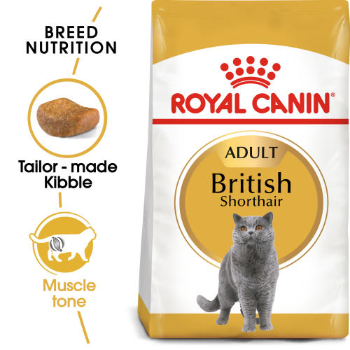 Royal Canin British Shorthair Adult Dry Cat Food