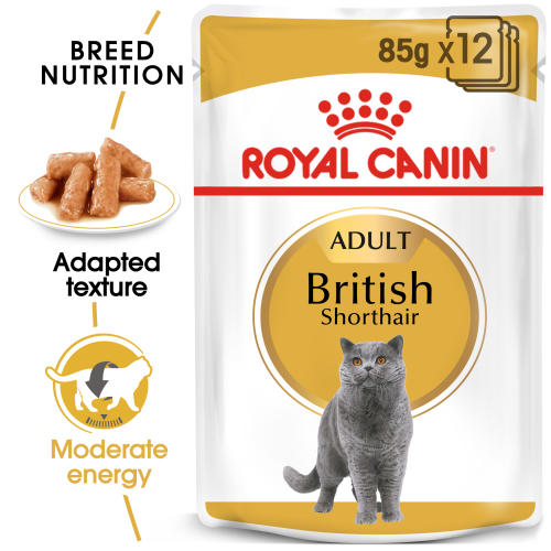 Royal Canin British Shorthair in Gravy Adult Wet Cat Food Pouches