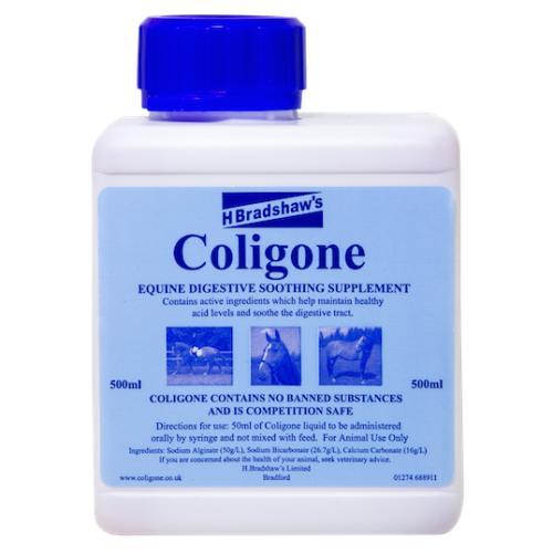 H Bradshaws Coligone Liquid Digestive Horse Supplement