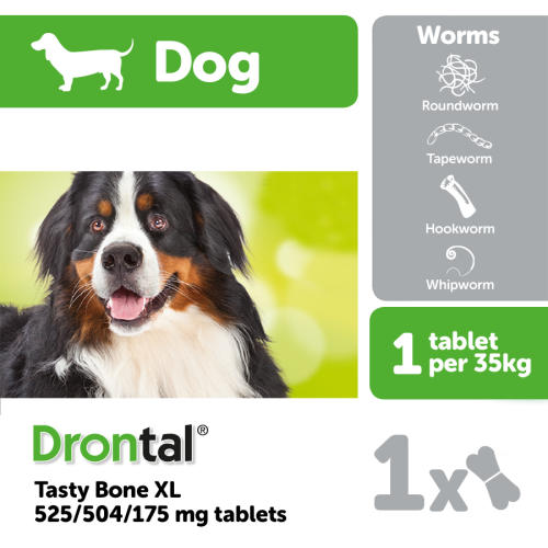 Drontal Dog Tasty Bone XL Worming Tablets