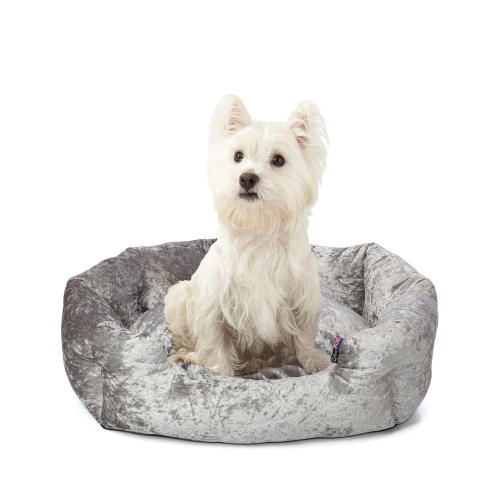 Bunty Bellagio Crushed Velvet Dog Bed
