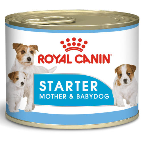 Royal Canin Starter Mousse Wet Adult and Puppy Dog Food