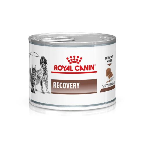 Royal Canin Veterinary Diets Feline & Canine Recovery Mousse Wet Food
