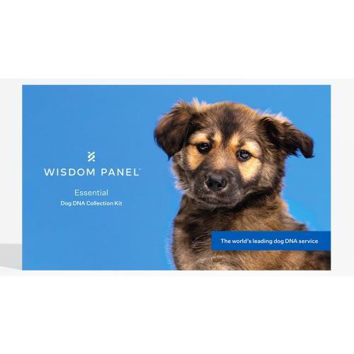 Wisdom Panel Essentials Dog DNA Testing Kit