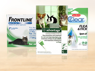 Spot On flea treatment